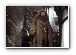 "ROBBIE COLTRANE as Hagrid in Warner Bros. Pictures' ""Harry Potter and the Chamber of Secrets."" PHOTOGRAPHS TO BE USED SOLELY FOR ADVERTISING, PROMOTION, PUBLICITY OR REVIEWS OF THIS SPECIFIC MOTION PICTURE AND TO REMAIN THE PROPERTY OF THE STUDIO. NOT FOR SALE OR REDISTRIBUTION  HARRY POTTER and all related indicia are trademarks of and ©2002 Warner Bros. All Rights Reserved. Harry Potter Publishing Rights ©J.K.R."